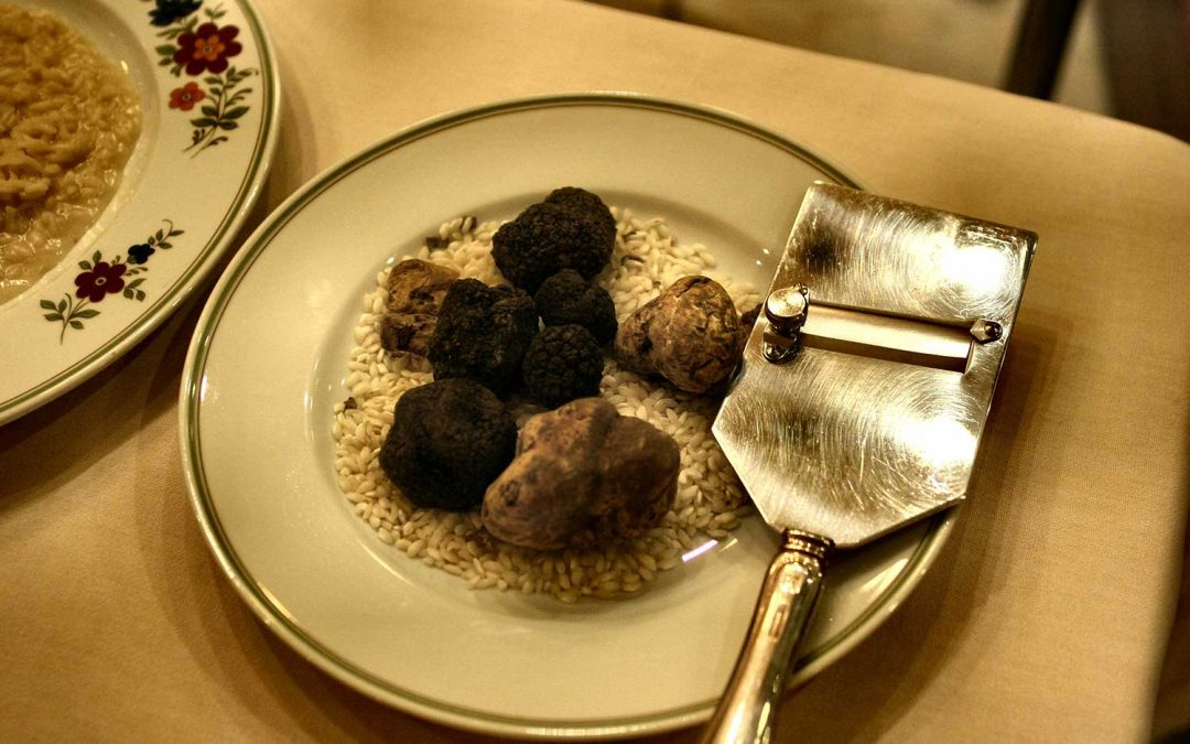 New record prices bring truffle investments into the spot light